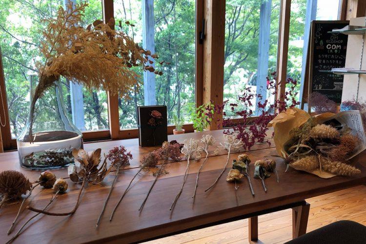 【北九州】木の家づくり展示館と植物