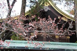 【北九州】宮地嶽神社へ参拝